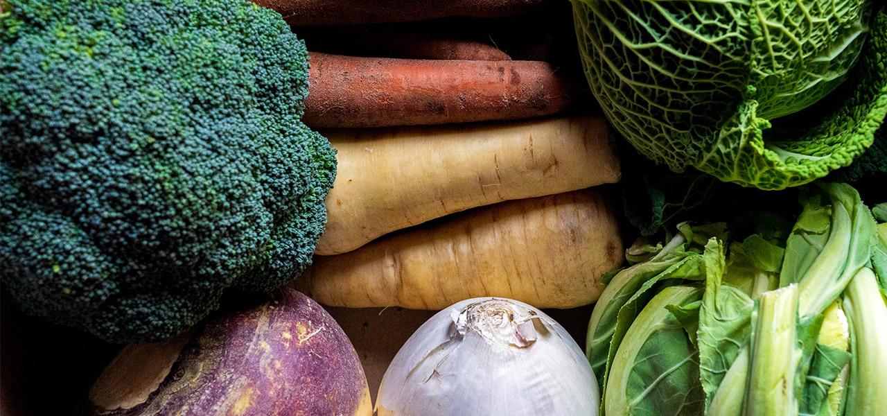 Assortiment de légumes d'hiver : choux, brocoli, carotte, panais, navet
