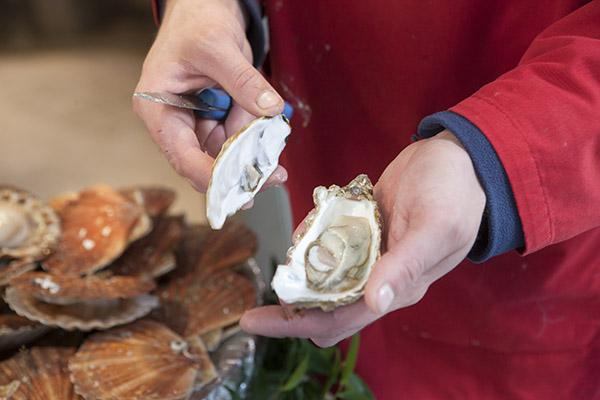 Poissonnier en train d'ouvrir une huître